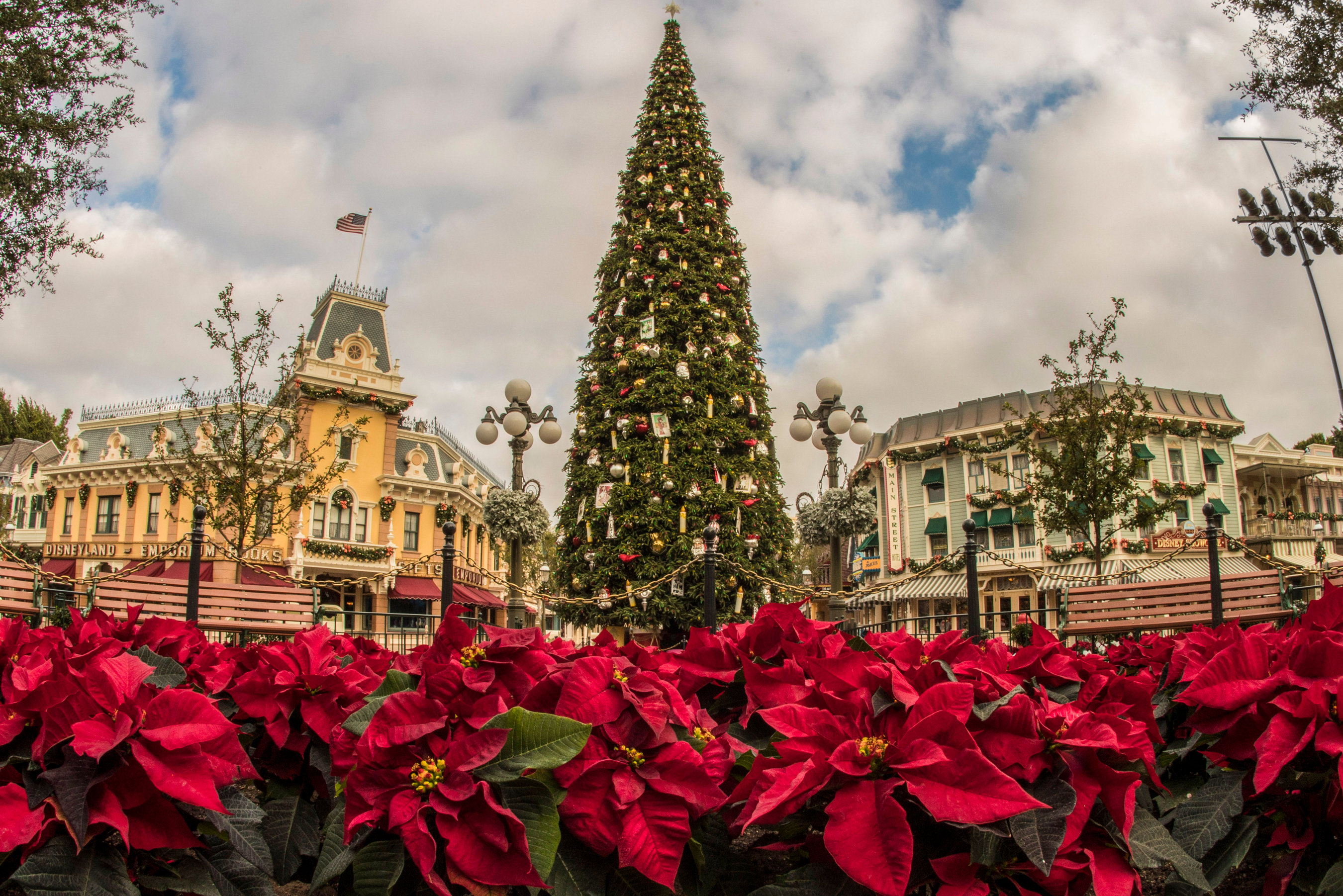 Disneyland Resort Cast Members Transform Parks for the Holidays